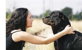 Жизни gt собака лучший друг человека