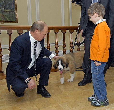 Статьи о выборе собаки gt собака путина