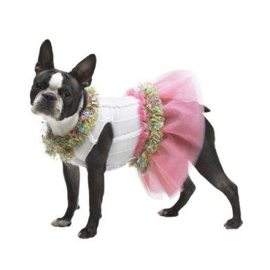 Как сшить одежду для собаки