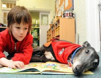 дети собаки чтение