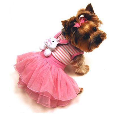 Собак gt модная одежда для собак