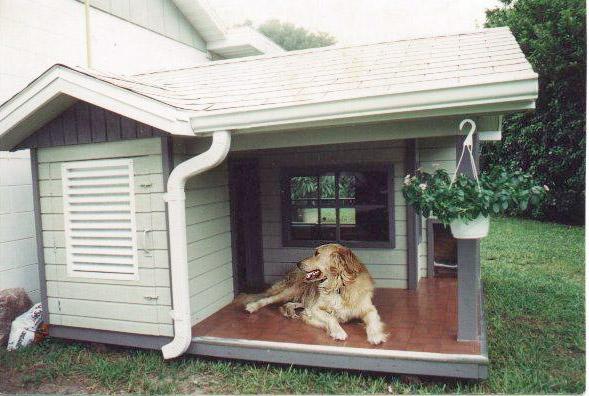 Как сделать вольер для собаки на даче своими руками