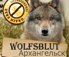 Wolfsblut в Архангельске